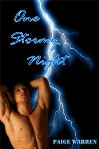One Stormy Night by Paige Warren