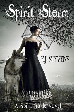 Spirit Storm by E.J. Stevens