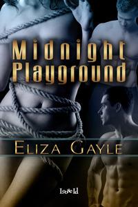 Midnight Playground by Eliza Gayle