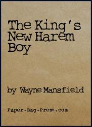 the-king-s-new-harem-boy