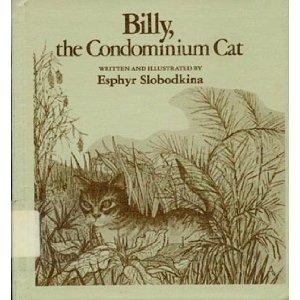 billy-the-condominium-cat