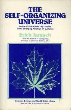 The Self-Organizing Universe: Scientific and Human Implications