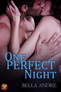 One Perfect Night (Seattle Sullivans #1; The Sullivans #9.5)
