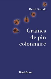 Graines De Pin Colonnaireroman