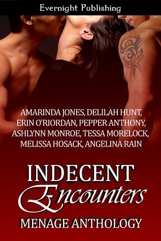 Indecent Encounters by Amarinda Jones