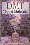 DMT: The Spirit M...