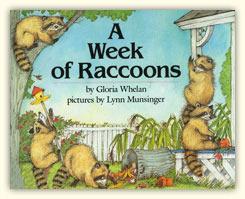 A Week of Raccoons