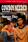 Cowboy Needed (Recovery, #1)