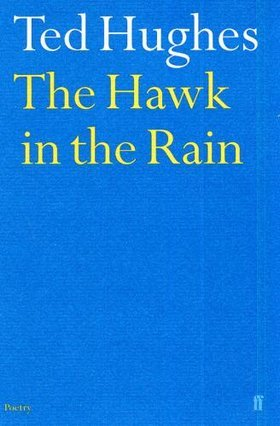 the-hawk-in-the-rain