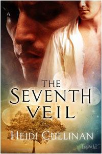 The Seventh Veil by Heidi Cullinan
