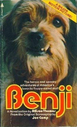 Benji by Allison Thomas
