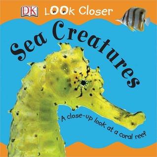 Sea Creatures by Sue Malyan