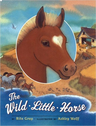 the-wild-little-horse