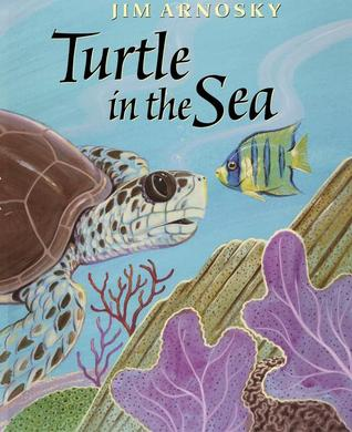 Turtle In The Sea by Jim Arnosky