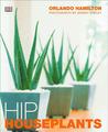 Download Hip Houseplants