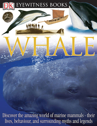 Whale (DK Eyewitness Books)