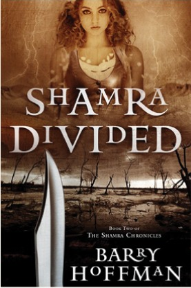 Ebook Shamra Divided by Barry Hoffman read!