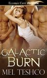 Galactic Burn (Alien Hunger, #1)