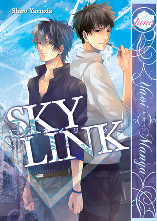sky-link
