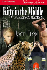 Kitty in the Middle by Joyee Flynn