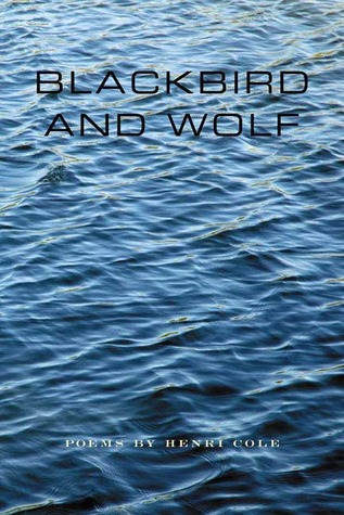 blackbird-and-wolf-poems
