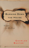 Burning Down the House: Essays on Fiction