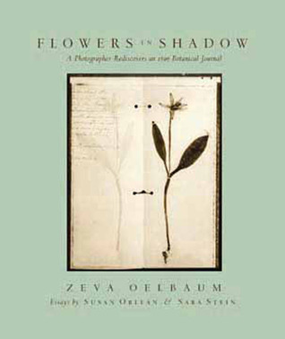 Flowers in Shadow: A Photographer Discovers a Victorian Botanical Journal