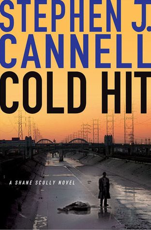 Cold Hit (Shane Scully #5)