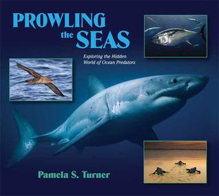 Prowling the Seas by Pamela S. Turner