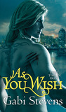 As You Wish (Time of Transition, #2)