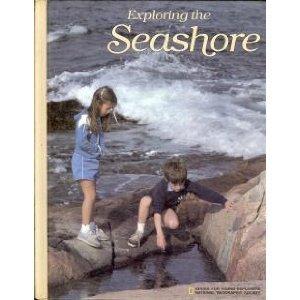 Exploring The Seashore by William Hopkins Amos