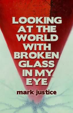 Looking at the World with Broken Glass in My Eye