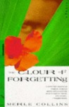 The Colour Of Forgetting