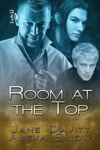 Room at the Top (Room at the Top, #1)