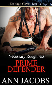 Prime Defender by Ann Jacobs