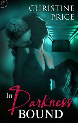 In Darkness Bound by Christine  Price