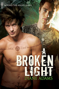 A Broken Light by Diane  Adams
