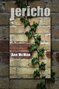 Image result for jericho ann mcman cover