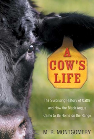 a-cow-s-life-the-surprising-history-of-cattle-and-how-the-black-angus-came-to-be-home-on-the-range