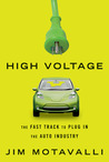 High Voltage by Jim Motavalli