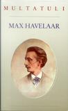 Max Havelaar, of de Koffieveilingen der Nederlandsche Handel-... by Multatuli