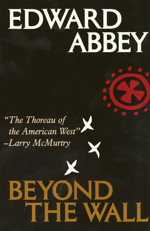 Beyond the Wall: Essays from the Outside