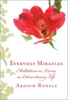 Everyday Miracles: Meditations on Living an Extraordinary Life