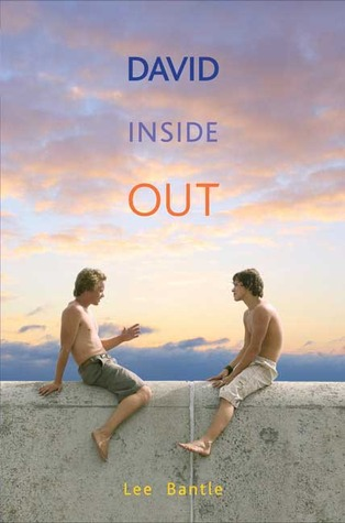 David Inside Out by Lee Bantle