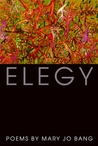 Download Elegy