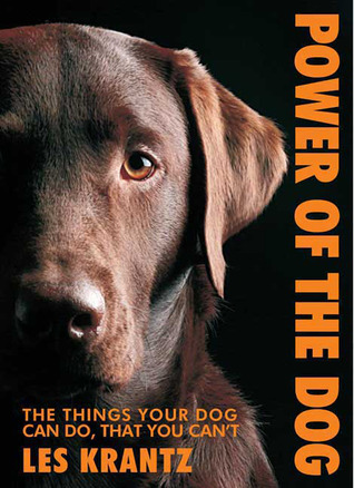Power of the Dog: Things Your Dog Can Do That You Can't