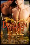 Dragon Fire  (Dragon Training, #2)