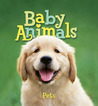 Baby Animals Pets