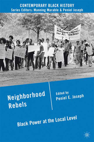 neighborhood-rebels-black-power-at-the-local-level