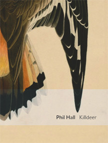 Killdeer by Phil Hall